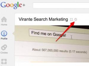 Google Plus Verified Page Name