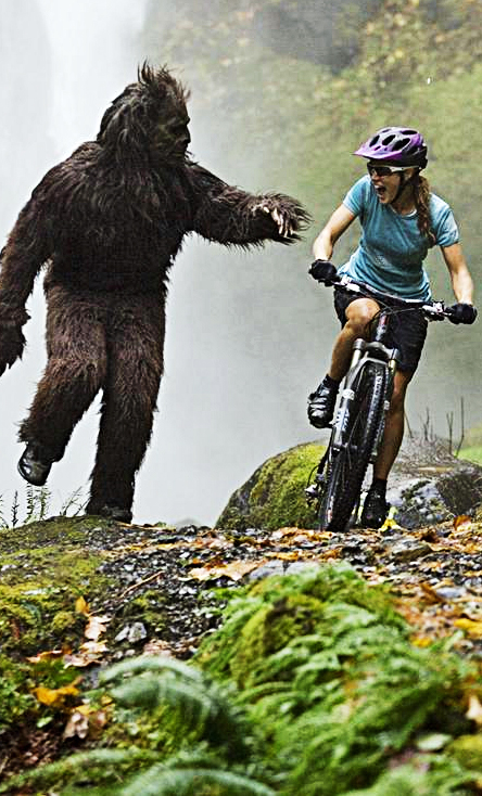 Why Google Author Rank is the Sasquatch of SEO