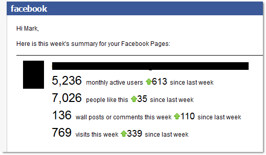 Facebook Page Activity Report Sample