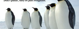 dontpanic-penguins