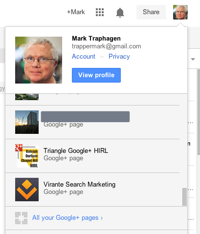 Select a Google Plus page profile
